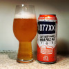HOW TO PAIR BEER WITH EVERYTHING: 077XX by Carton Brewing Company