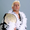 A FREAK ACCIDENT: 'Pokémon Go,' UFC 200, and an interview with WWE Hall of Famer Ric Flair