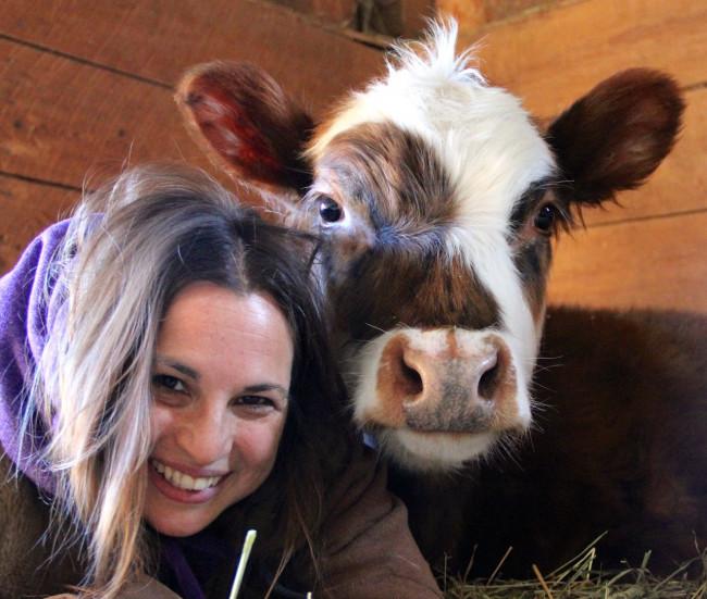Indraloka Animal Sanctuary celebrates 10-year anniversary with Clarks Summit fundraiser on May 11