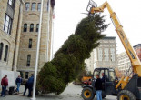 Lackawanna County lights Courthouse Christmas tree with carols and hot chocolate on Nov. 30