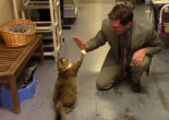 A FREAK ACCIDENT: Furkids viral video interview, CES 2017 preview, and Mariah Carey