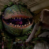 'Little Shop of Horrors' screens with original ending in NEPA theaters Oct. 29-31