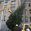 Lackawanna County lighting Courthouse Christmas tree with carols and hot chocolate on Nov. 29