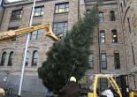 Lackawanna County lighting Courthouse Christmas tree with carols and hot chocolate on Nov. 29