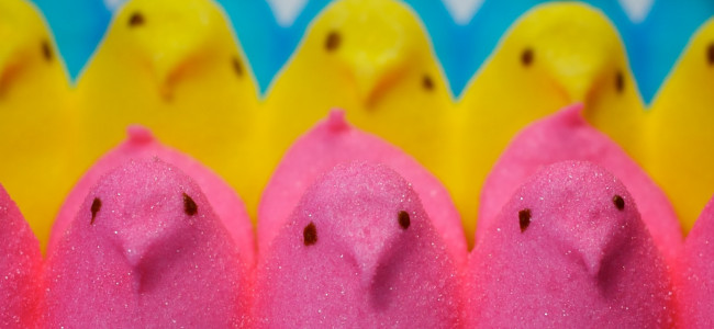 Creating Peeps chicks one of many free kids activities at PeepsFest in Bethlehem Dec. 30-31