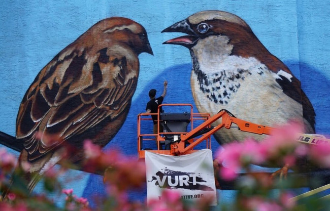 Street Art Society of NEPA begins first of 10 local murals in Edwardsville July 26-27
