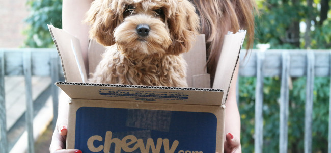 Chewy.com expands with new Archbald distribution center, creating 1,000 jobs in Lackawanna County