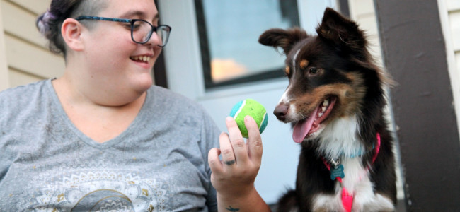 From singer to whisperer, Scranton musician Katie Evans starts dog training business