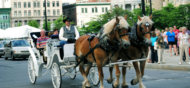 Historical Society hosts horse-drawn carriage tours in Scranton, holiday raffle, and virtual lectures