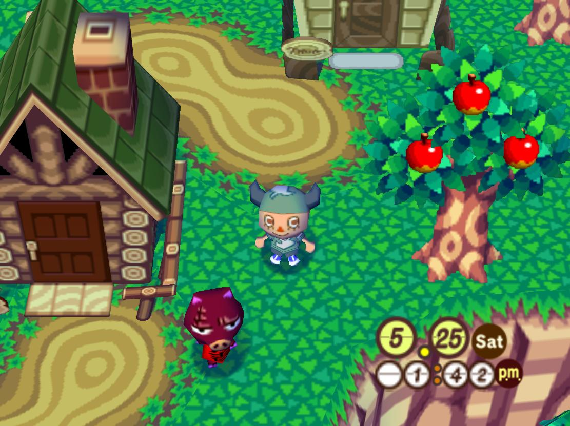 Animal Crossing: Wild World (DS) | Rudy's Corner